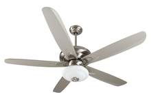 "Craftmade K11159 - Zena 56"" Ceiling Fan Kit with Light Kit in Stainless Steel"