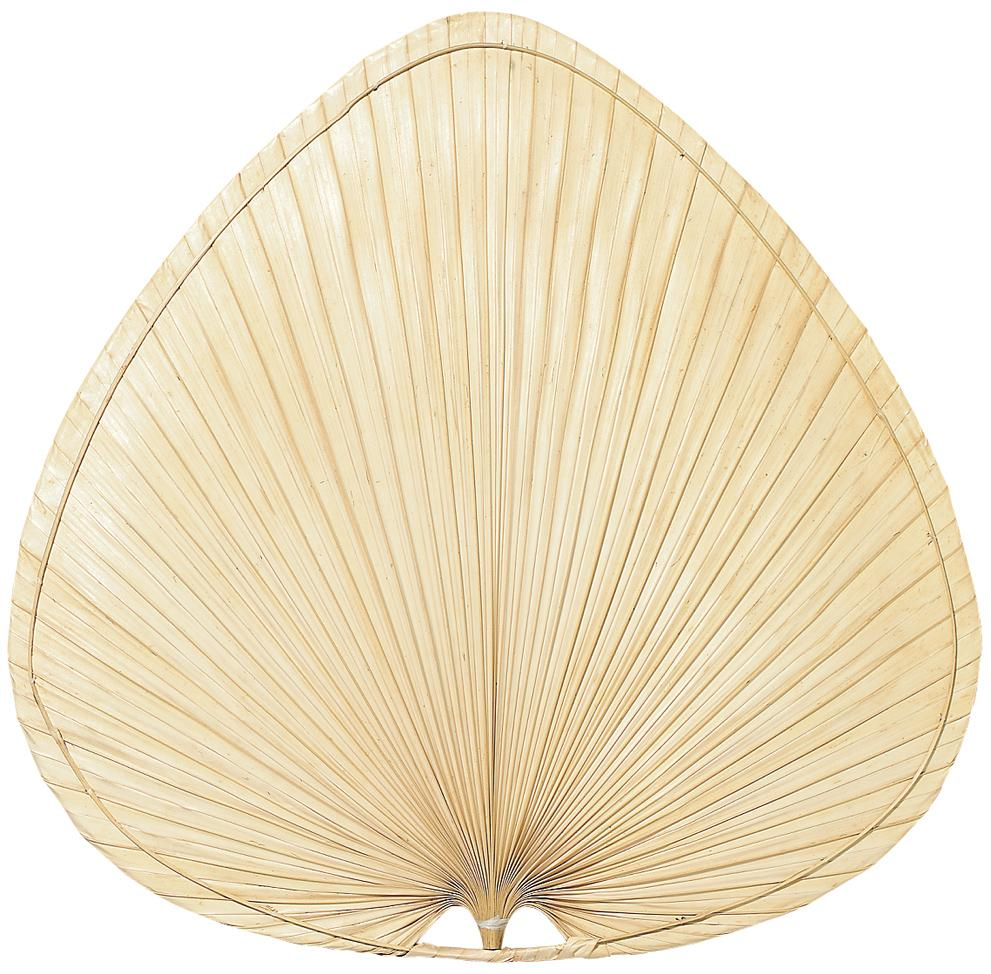 "18"" PALISADE BLADE: WIDE OVAL PALM - SET OF 8"